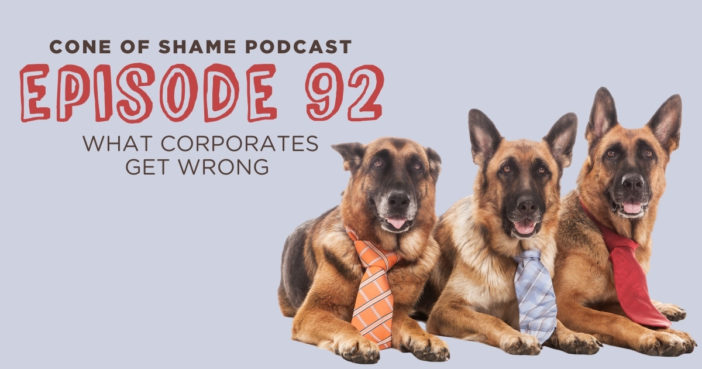 three german shepherd dogs wearing business ties