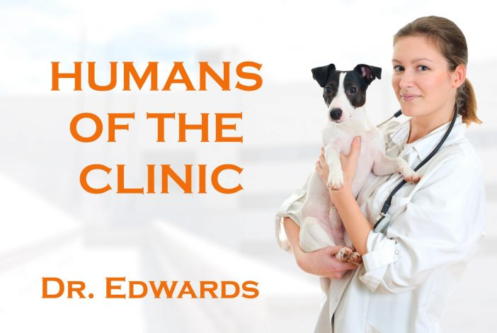 humans of the vet clinic