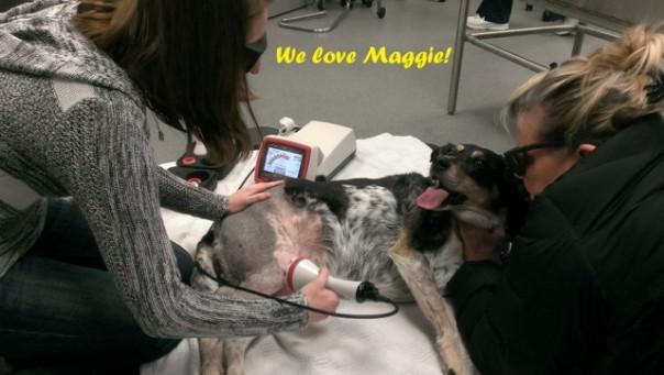 Maggie picture