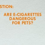 The Truth about  E-Cigarettes & Pets