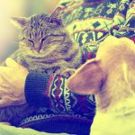 What Pets Bring to Mother's Day