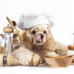 How Peanut Butter Can Kill Dogs