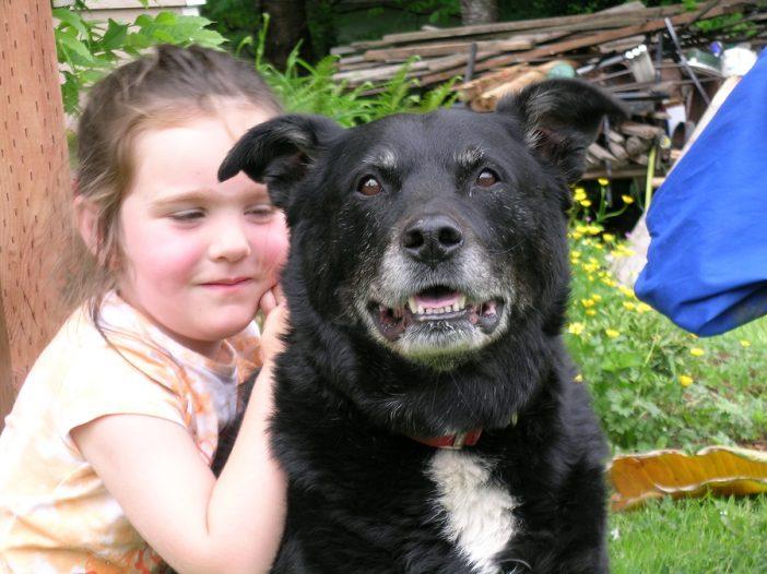Cute little girl hugs her old dog