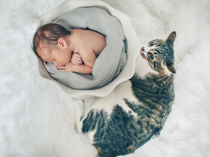 parenting veterinary medicine