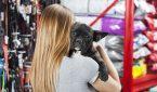 Woman Carrying French Bulldog At Pet Store