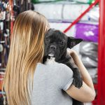 Top 5 Deadly Dangers at The Pet Store