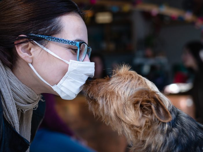 person in mask and yorkie