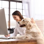 woman working with dog