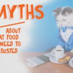 3 Myths About Cat Food That Need To Be Busted