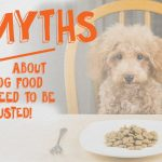 3 Dog Food Myths That Need to Be BUSTED!